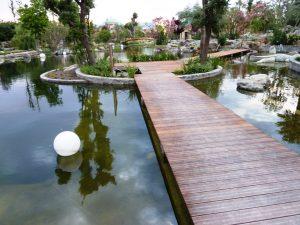 אדריכלות נוף - תכנון בריכות שחייה אקולוגיות