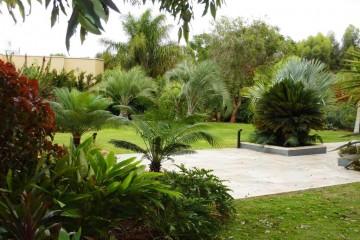 גן טרופי – מושב גאליה