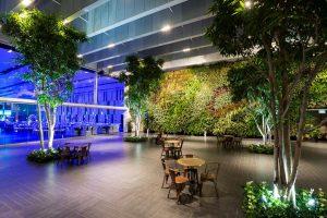 קירות ירוקים קיר ירוק מודיעין - אדריכלות נוף