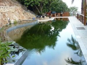 אדריכלות נוף - תכנון ועיצוב בריכות שחייה אקולוגיות ביולוגיות - קובי טל